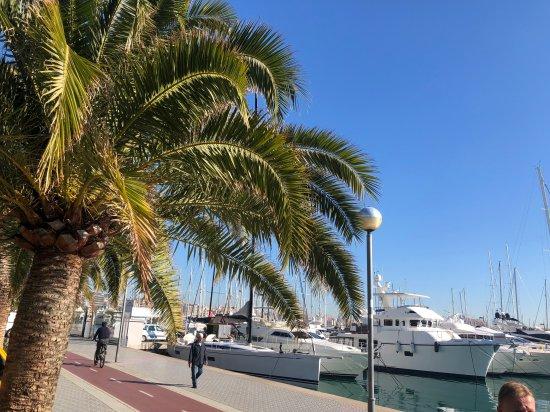 The Streets of Mallorca